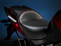 World Sport on the Kawasaki Versys (Shown with the CarbonFX insert and red welt.)